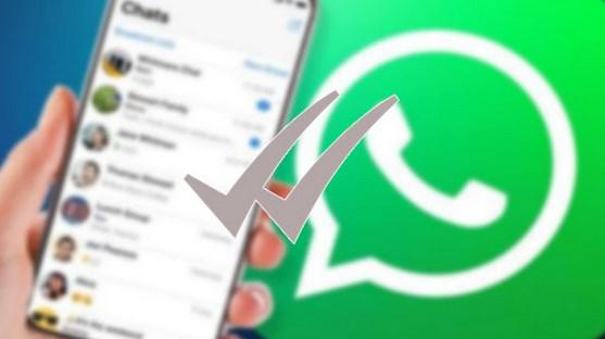 Mengatasi-WhatsApp-Pending-Dengan-Mudah