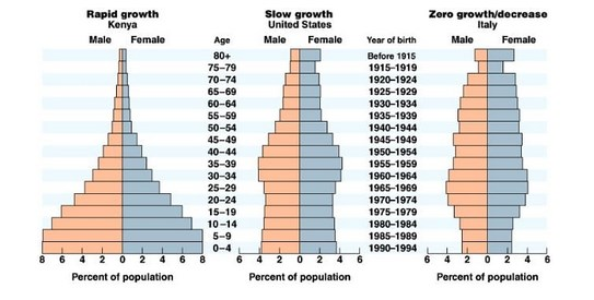 Fungsi-Piramida-Penduduk-dan-Macam-Macamnya