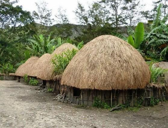 Rumah-Adat-Papua-dan-Penjelasannya